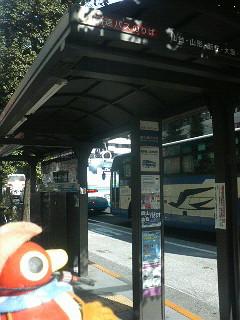 P1001061.JPG