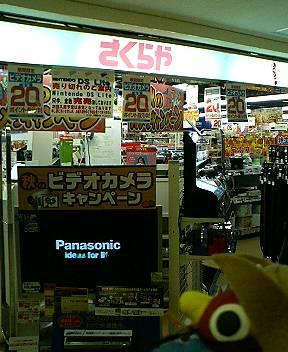 P1000062.JPG