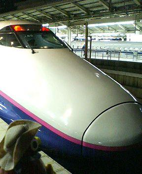 P1000381.JPG