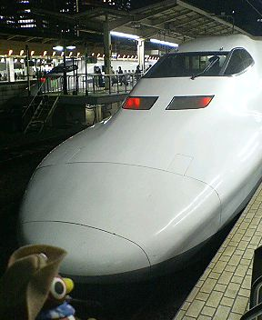 P1000398.JPG